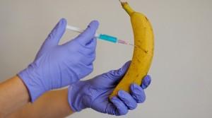 banane_procesate